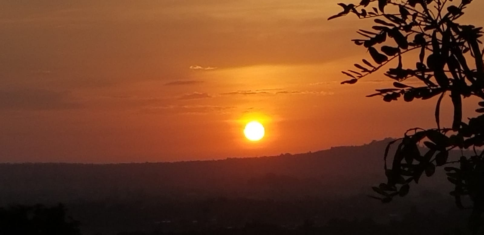 WhatsApp_Image_2020-05-18_at_12.26.17_3.jpeg