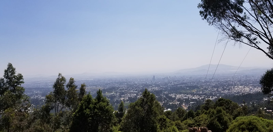 WhatsApp_Image_Addis_Abeba_2020-05-18_at_12.26.14.png